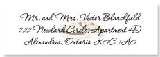 Clear Wedding Address Labels, with rings